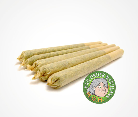Pre Rolled Cone Joints Buy Weed Canada