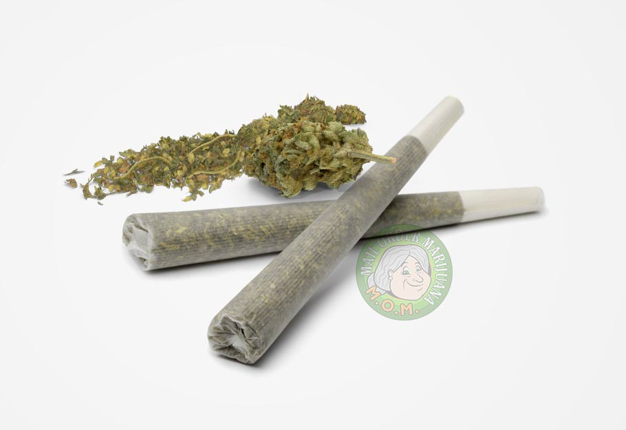 Buy Pre-rolled Joints